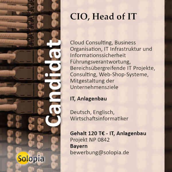 CIO, Head of IT 0842