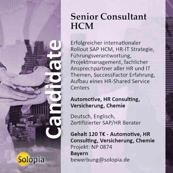 Senior Consultant  HCM Kundenmanager 0874