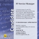IT Service Manager