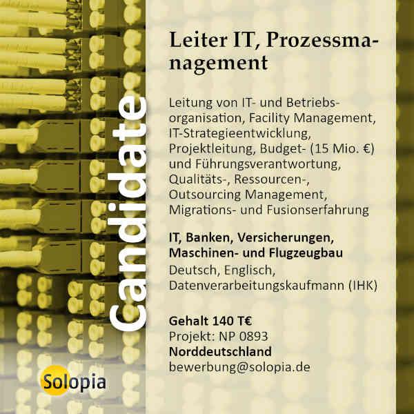 Leiter IT, Organisation, Prozessmanagement